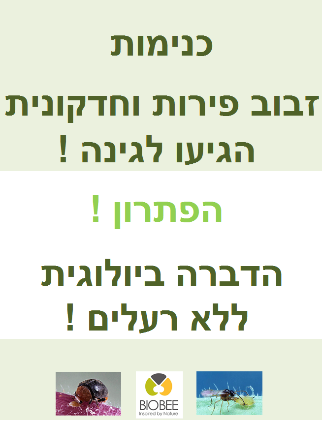 list_banner_X3